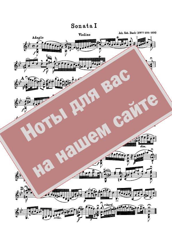бах скрипичные партиты и сонаты приемная